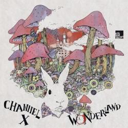 Cover Artwork Channel X – Wonderland