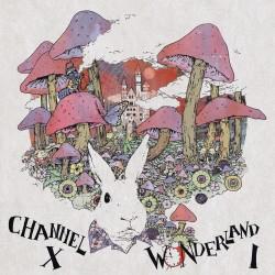 Cover Artwork Channel X – Wonderland - Part I
