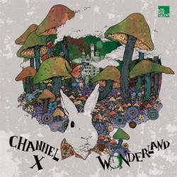 Cover Artwork Channel X – Wonderland Remixed