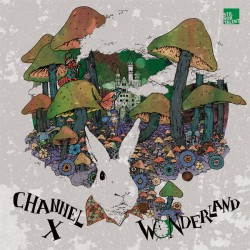 Cover Artwork Channel X – Wonderland Remixed