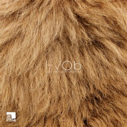 Cover Artwork HVOB – Lion