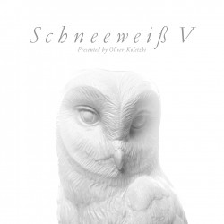 Cover Artwork Various Artists – Schneeweiß V