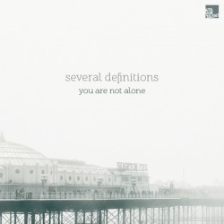 Cover Artwork Several Definitions – You Are Not Alone