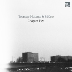 Cover Artwork Teenage Mutants & Ed One  – Chapter Two