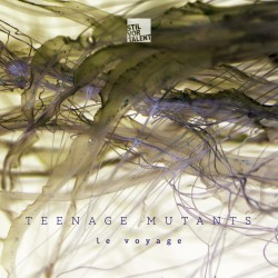Cover Artwork Teenage Mutants – Le Voyage