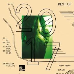 Cover Artwork Various Artists  – Best Of Stil Vor Talent 2017