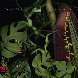 Cover Artwork PALMFooD, Mia Mendi – Palmfood I Mia Mendi