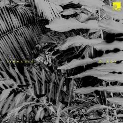 Cover Artwork Einmusik, D-Nox – Einmusik I D-Nox