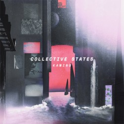 Cover Artwork Collective States – Kamino