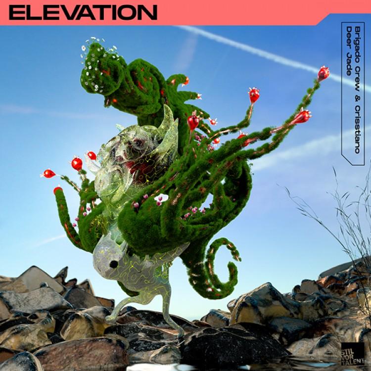 Photo von Elevation