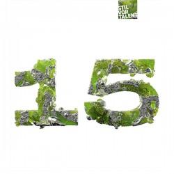 Cover Artwork Various Artists – 15 Years Stil vor Talent | Part 2